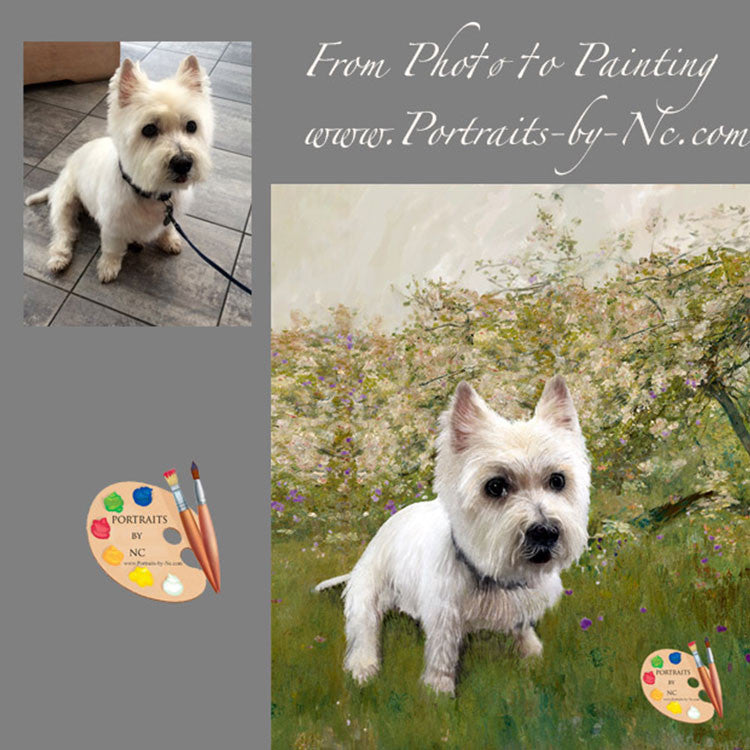 Westie Dog Portrait from Photo 351