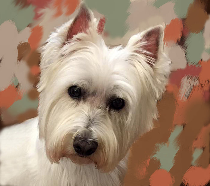 Westie Dog Portrait