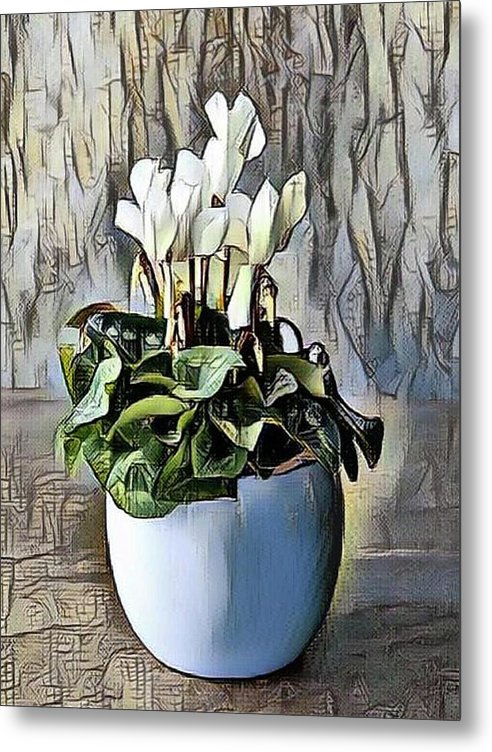 products/white-cyclamen-portraits-by-nc_1955b64a-ad86-4d19-93a6-391a03ed71e2.jpg