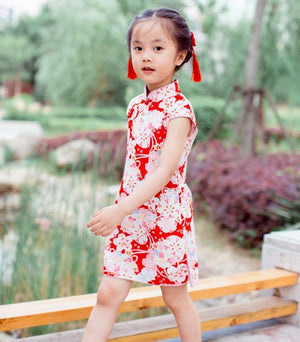 1-8Y Girls Cheongsam Dress A200C18E