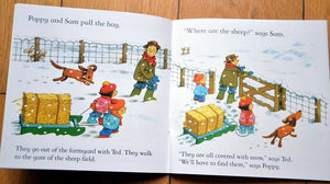 Children Usborne Story Book The Snow Storm BK1031N