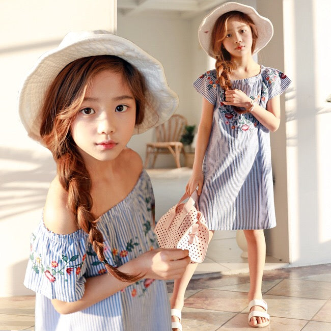 3-15Y Girls Blue Embroidery Dress G21031H (Mother size available)