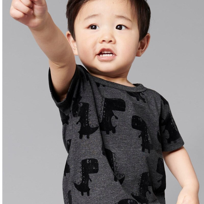 334a3c6b1710f 2-7Y Boys Short Sleeve Dinosaur T-Shirt A10424E – Pocketpig Diary