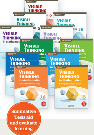 Visible Thinking in Mathematics (P1 to P6)