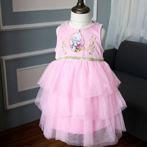 Frozen Embroidery Layers Tulle Dress G20131K