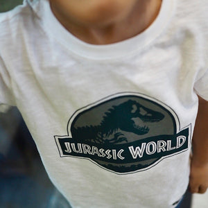 1-10Y Boys Short Sleeve Dinosaur T-Shirt A10427C
