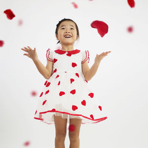 Red Flying Hearts Tulle Dress G20126F