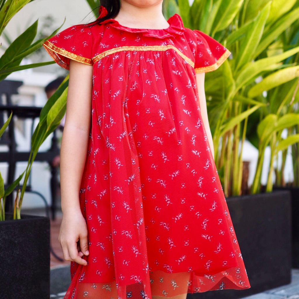 2-8Y Girls Red Princess Tulle Dress G20127A