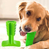 00724-Bristly-Dog-Tooth-Brush-Chewing-Stick-TOOTH-BRUSHING-For-Your-Fur-Baby-Puppy_1_RX79N5POA2L1.jpg