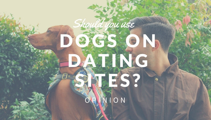 🔥 [CONTROVERSIAL]  ❄️Should you use your Dog in your dating profile?