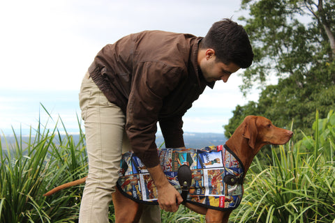 Luxury Dog Coat Owen & Edwin Jacket Dog Jacket Luxury Dog Blazer Sydney Blazer German Shorthaired Pointer Vizsla Weimaraner Dalmatian Rhodesian Ridgeback