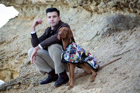 Sassy the Vizsla - Dog Jacket - Rome Blazer - Luxury Dog Coat - Dog Blazer - Owen & Edwin - Australian Made
