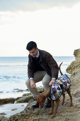 Sassy the Vizsla - Rome Blazer - Dog Coat - Dog Jacket - Owen & Edwin - Luxury Dog - Australian Made