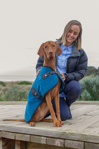 Sassy Vizsla - Owen & Edwin - Dog Jacket - Australian Made - Dog Blazer - London Blazer - Dog Coat - Luxury Dog