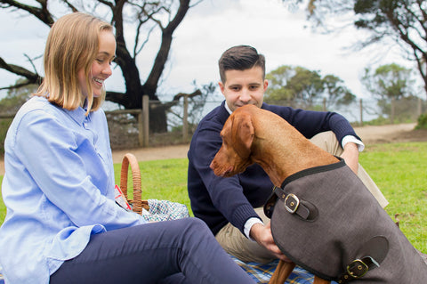 Luxury Dog Fashion Dog Brand Owen & Edwin Melbourne Blazer Dog Blazer Dog Jacket Australian Made Handcrafted