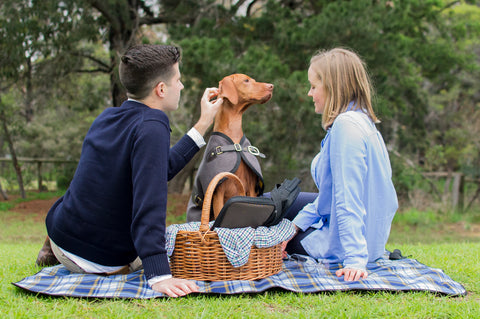 Owen & Edwin - Luxury Dog Blazer - Melbourne - Dog Coat - Australian Made - Luxury Dog Jacket