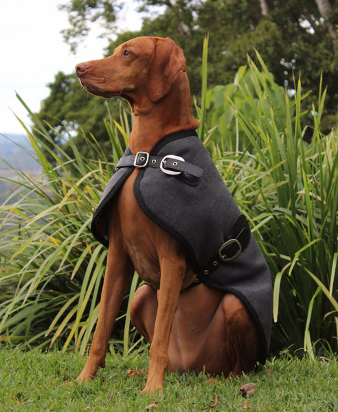 The Melbourne Blazer - Charcoal - [Product_type] - Owen & Edwin - Dog Coat - Dog Jacket - Pointer - Vizsla - German Shorthaired Pointer - Weimaraner - luxury
