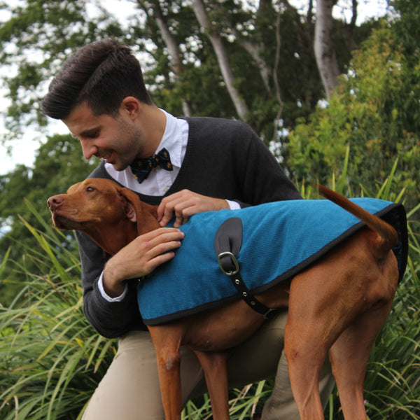 The London Blazer - Teal - [Product_type] - Owen & Edwin - Dog Coat - Dog Jacket - Pointer - Vizsla - German Shorthaired Pointer - Weimaraner - luxury