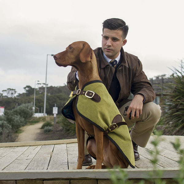 The London Blazer - Fern - [Product_type] - Owen & Edwin - Dog Coat - Dog Jacket - Pointer - Vizsla - German Shorthaired Pointer - Weimaraner - luxury