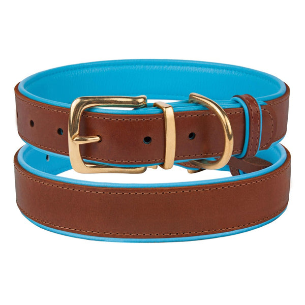 The Torquay Dog Collar - Sky Blue - [Product_type] - Owen & Edwin - Dog Coat - Dog Jacket - Pointer - Vizsla - German Shorthaired Pointer - Weimaraner - luxury
