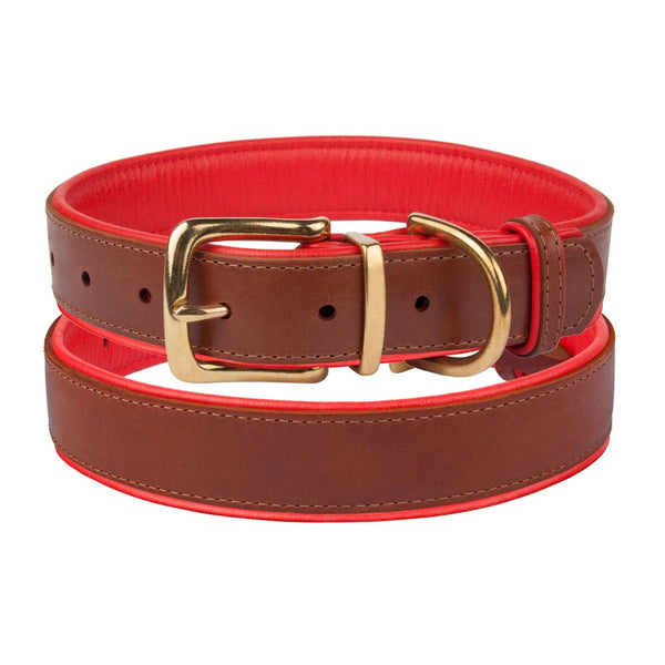 The Torquay Dog Collar - Fire Engine Red - [Product_type] - Owen & Edwin - Dog Coat - Dog Jacket - Pointer - Vizsla - German Shorthaired Pointer - Weimaraner - luxury