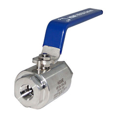 NPT Threaded End SS316 10,000 PSI Ball Valves