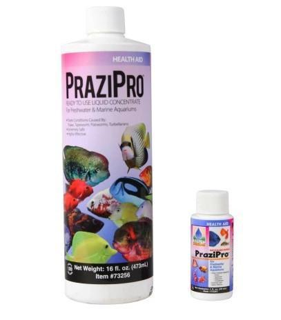 Fish Medication - Hikari PraziPro Parasite Treatment