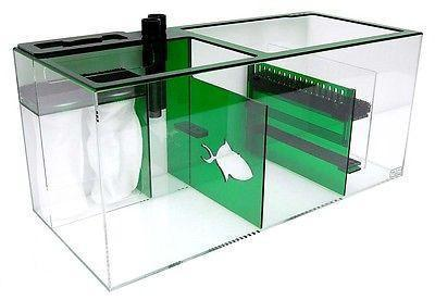 Refugiums And Sumps - Trigger Systems Emerald Green 34""