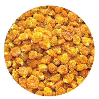 Golden Inca Berries Organic