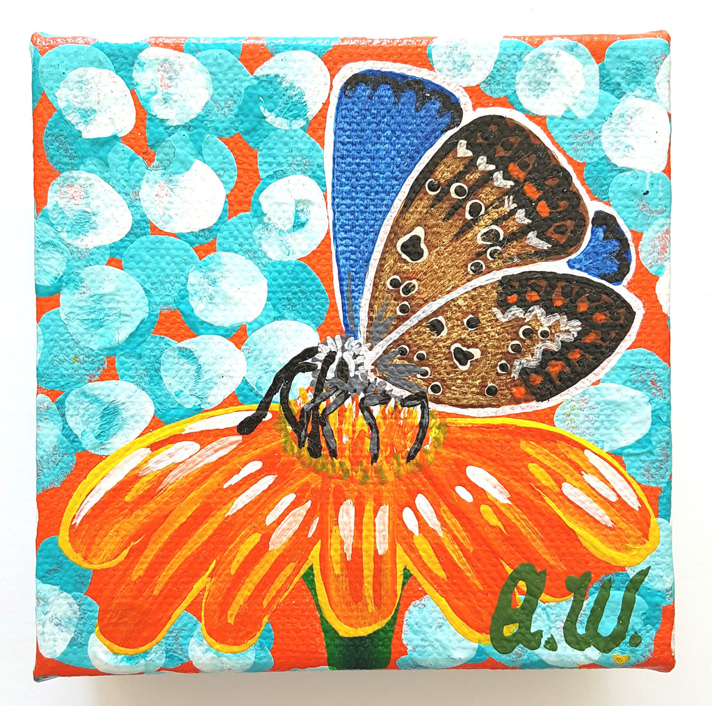 Busy Butterfly 1  $29.95