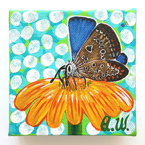 Busy Butterfly 3  $29.95