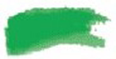 Daler Rowney FW Pearlescent Ink - Macaw Green 115