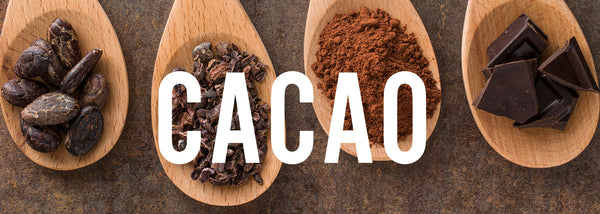 The Super Powers of Cacao