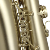 Trevor James 'The Horn 88' Alto Saxophone