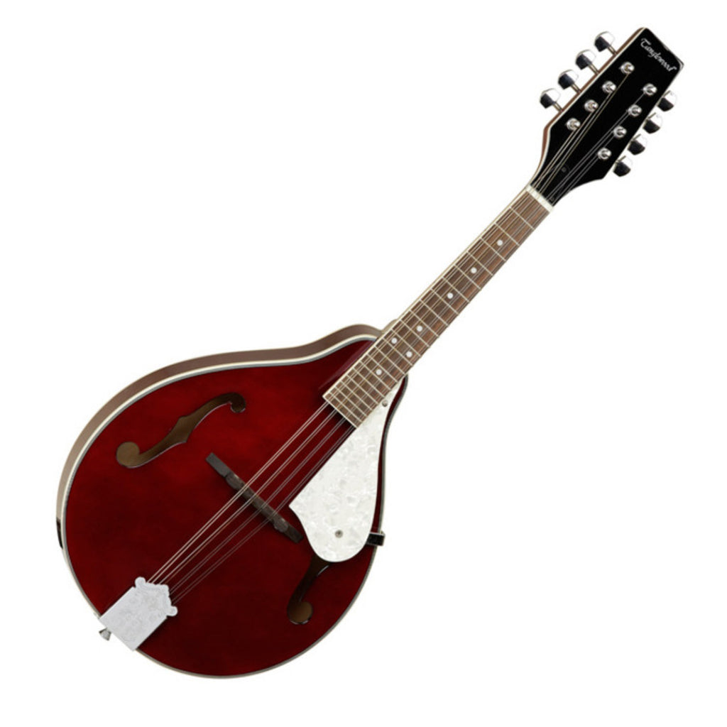 Tanglewood TWM T MH STE Union Electro Mandolin