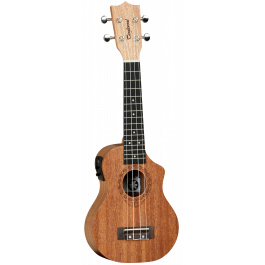 Tanglewood TWT1-CE