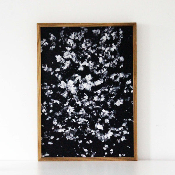 Blossom black/white Print