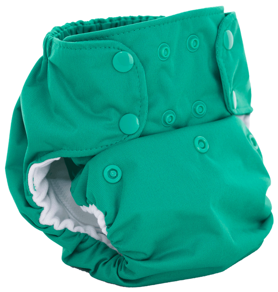 Smartbottoms Dream Diaper