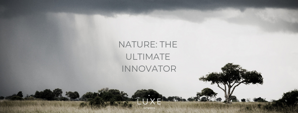 Why we believe that nature is the ultimate innovator