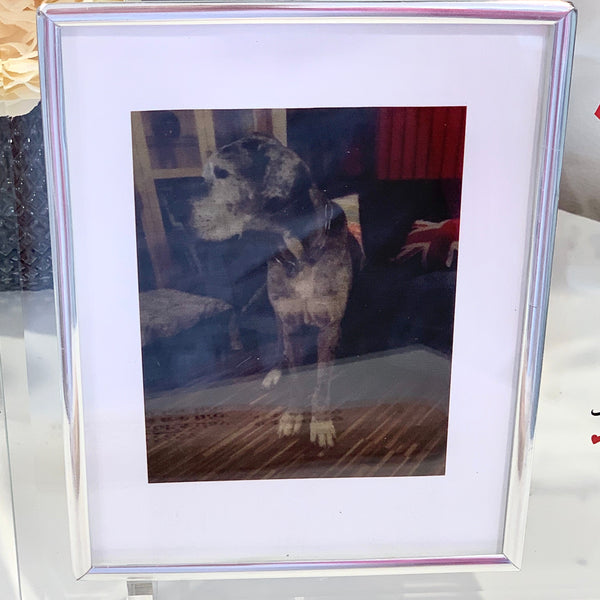 Glass Picture Frame Furry Friend Memorial Gift