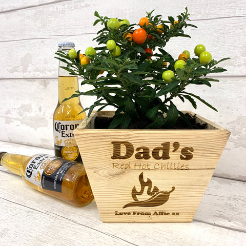 Pine Plant Pot with seeds - Dads Chillis