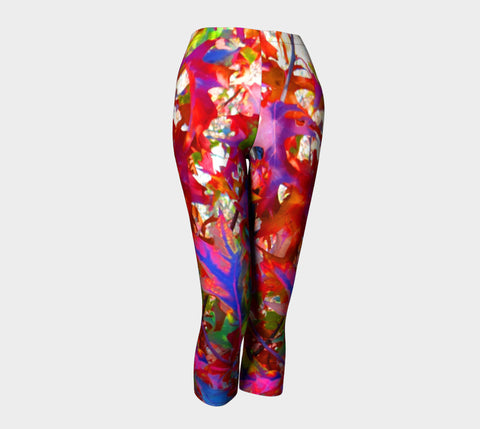 CDSC00216 Rainbow Leaves Capris Match wBaby