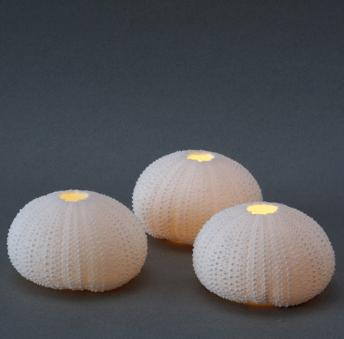Rafiki Urchin Tealights - Set of Three