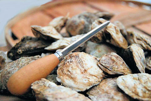Maryland Oysters ~ Available Oct-April