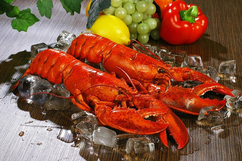 (4) 1-1.15 lb LIVE Maine Lobsters- Shipped Direct From Dock In New England
