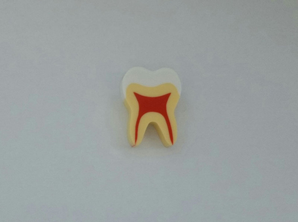 Tooth-shaped Eraser