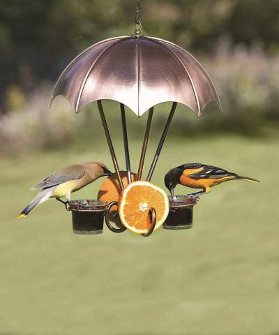 Oriole Bird Feeders
