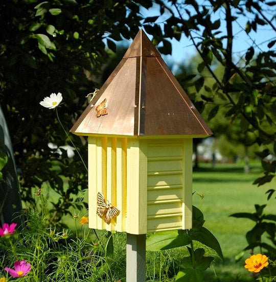 Butterfly Feeders and Houses