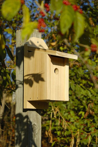 Heartwood 133A Chickadee Joy Box