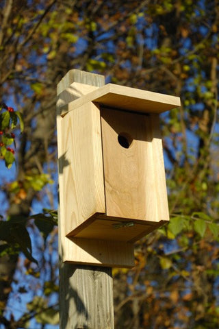 Heartwood 135A Eastern Bluebird Joy Box